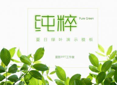 清新绿叶风格演示PPT模板